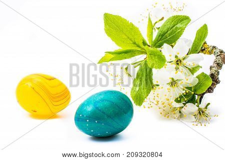 close-up of colorful easter eggs and cherry blossom or sakura flowers on white background with copy space. border template, easter greeting and holiday card.