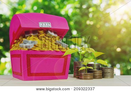 growing plant and money coin stack with piggy bank or treasure chest shaped money box on green nature background sunlight effect saving money business finance and banking concept