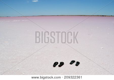 The Pink Lake Encountered On The Way To Central Australia, Not Far From Adelaide
