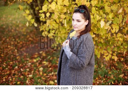 The Girl Is Walking Along The Autumn Park With A Leaf In Her Hand