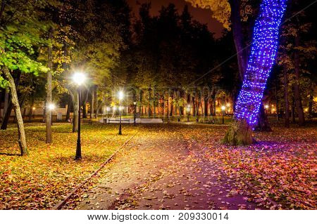 Night Park In Autumn With Fallen Yellow Leaves.