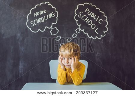 Homeschooling Vs Public Schools - The Boy Sits At The Table And Chooses Between Home Schooling And P