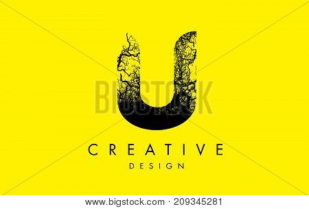 U Logo Letter Made From Black Tree Branches