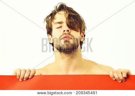 Bearded Man, Caucasian Sexy Amused Macho