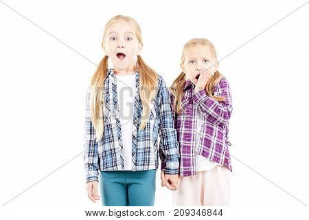 Portrait of cute little sisters in checked shirts posing on white background