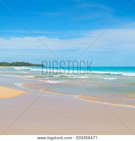 Beautiful ocean long sandy beach and tropical vegetation