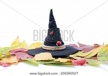 Magic Witch Hat Among Autumn Leaves On A White Background