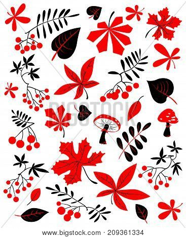 Autumn floral set. Fall season vector illustration with bright leaves rowan and grape berries mushrooms. Collection for seasonal cards designs and posters in black red white colors