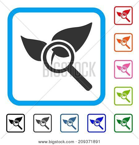 Explore Natural Drugs icon. Flat grey pictogram symbol in a light blue rounded frame. Black, gray, green, blue, red, orange color additional versions of Explore Natural Drugs vector.