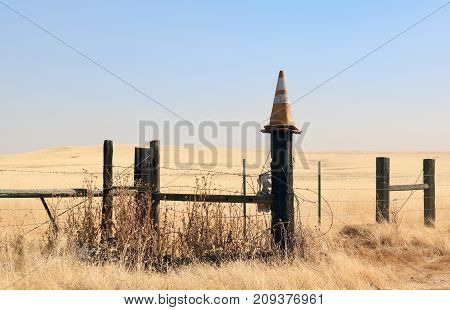 An old wooden fence, held together with barbed wire, with a faded traffic cone on top of a post with a golden field  behind and lot of blue sky above.