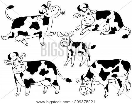 Vector set of black and white cute cartoon cows. Vector cow. Cows vector illustration