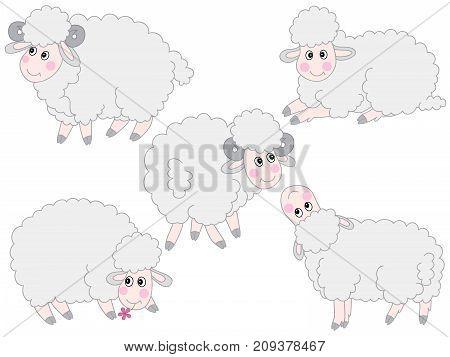 Vector set of cute cartoon sheep. Vector sheep. Sheep vector illustration