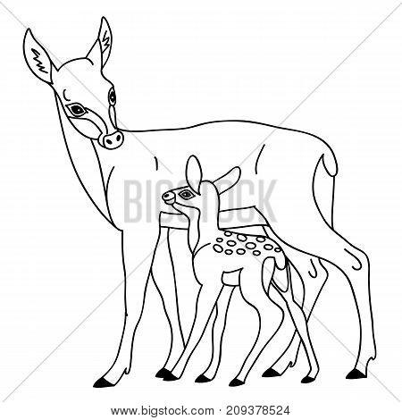 Vector black and white cute cartoon deers. Vector deer. Deers vector illustration