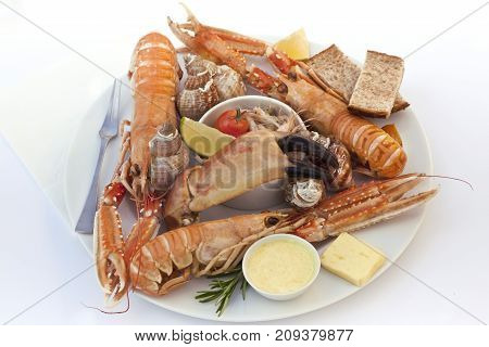 Sea Food On A Plate