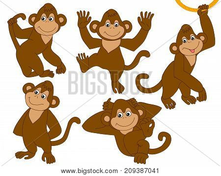Vector set of cute cartoon monkeys. Vector monkey. Monkeys vector illustration