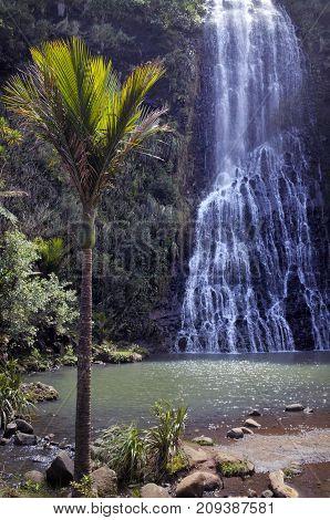 Vertical View Of Karekare Falls New Zealand