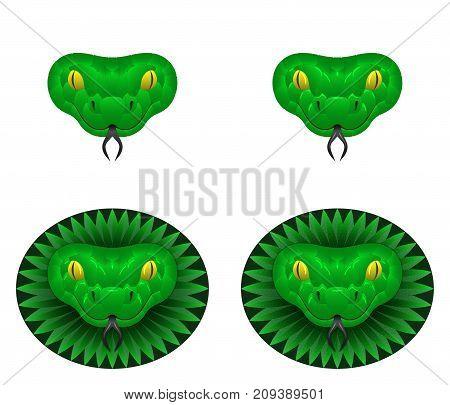 Green snake head vector illustration of snake head