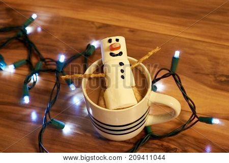 Snowman in coco with christmas lights around cup