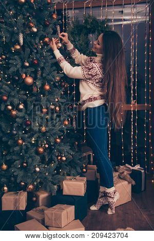 Feast is coming! Charming slim lady with long hairstyle is excited setting the decorative pinetree in knitted cute traditional x mas costume with ornament enjoy garland of sparkles on window