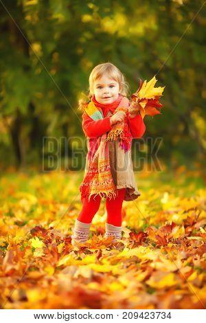 Happy little girl in the autumn park