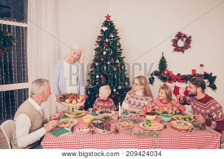 Six Cheerful Relatives, Stuffed Small Turkey And Fresh Yummy Vegetables, Fruits On Round Plank, Chec