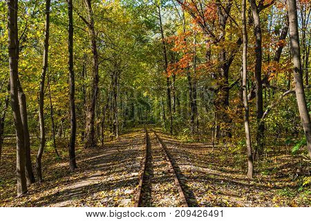 Railroad through the Fall Forest in autumn