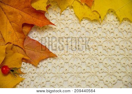 Beautiful maple leaves on a lace doily