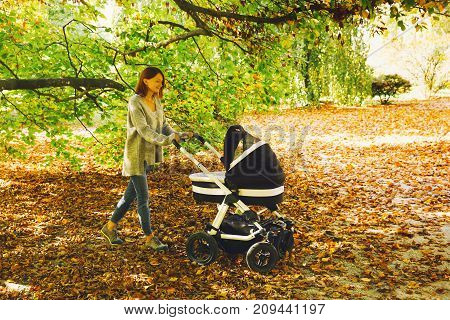 Beautiful Mother With Baby Carriage Walking In Autumn Park.