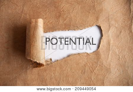 Torn piece of scroll uncovering the word potential