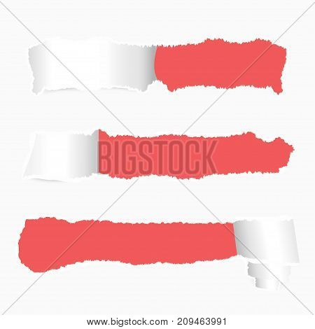 Ripped paper banner design. Realistic torn paper set with holes and ripped edges for text. Vector