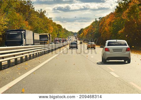 Autumn road with cars and trees with yellow leaves.