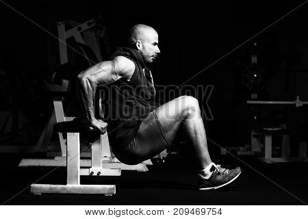 Triceps Exercise On Bench In A Gym