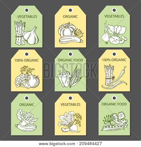 Vector labels with various vegetables and inscriptions