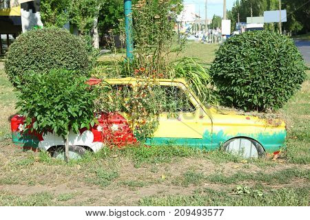 Flowerbed with plants made from old car outdoors