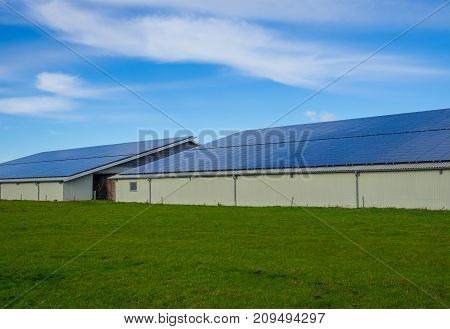 Solar panels on modern farm buildings with blue sky and green grass, Schleswig-Holstein, Germany.