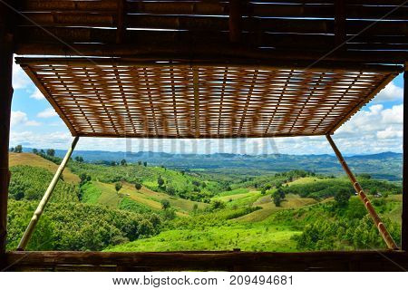 Bamboo window with moutain green view life in nature.