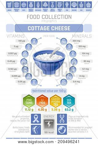 Food infographics poster, cottage cheese dairy vector illustration. Healthy eating icon set, diet design elements, vitamin mineral supplement chart, protein, lipid, carbohydrates, diagram flat flyer.