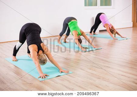 Three girls practicing yoga, Svanasana / Downward dog pose