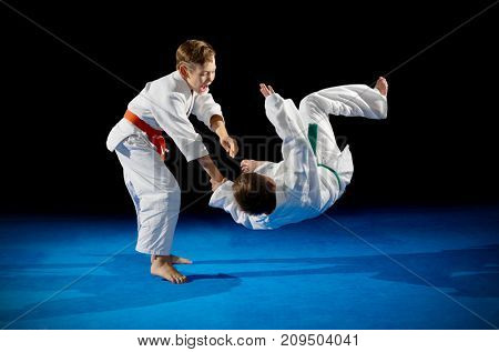 Little boys martial arts fighters isolated