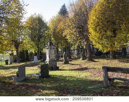 Village Cementery In Autumn Sunny Day