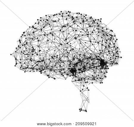 Concept of human intelligence with human brain. 3d illustration
