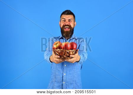 Farmer With Happy Face Holds Red Apples. Gardening And Fall