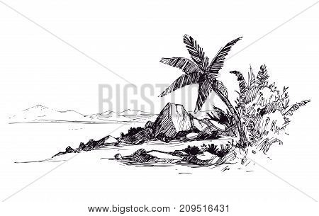 Tropical beach with palm trees and stones. Hand drawn sketch. Vector illustration.