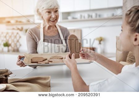 Excited girl is taking from tray a cookie in shape of Christmas glove. Her granny is looking at her with love and smiling