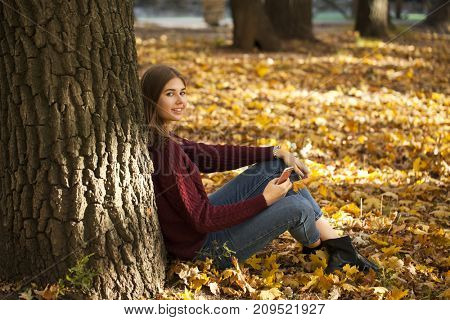 Young beautiful brunette girl in a sweater and blue jeans sits in an autumn park