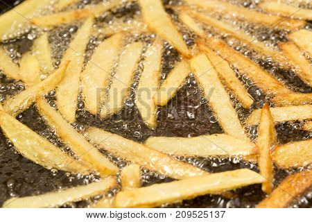 French fries fried in a pan . photo in the studio