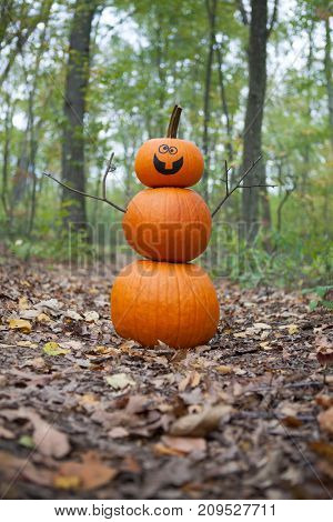 Pumpkin man in the woods