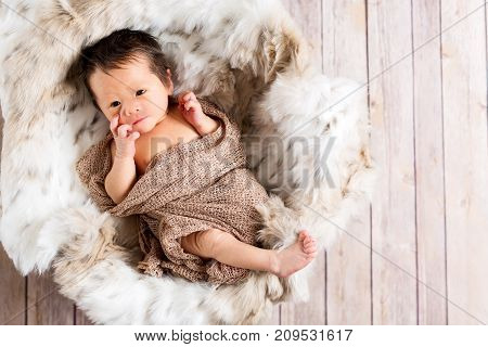 Newborn infant baby boy in a little basket