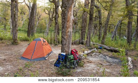 One orange tent in a wild campsite in a forest / Camping gear and campfire