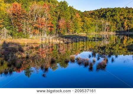 Multicolored foliage of autumn forests is reflected in ponds. The pond is smooth like a mirror. Magnificent resort in French Canada - Mont Tremblant. Concept of ecological and automobile tourism